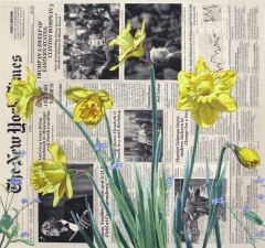 Spring (April) - Narcissus and Forget-Me-Not