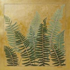 Winter - Ferns